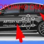Artery network отзывы